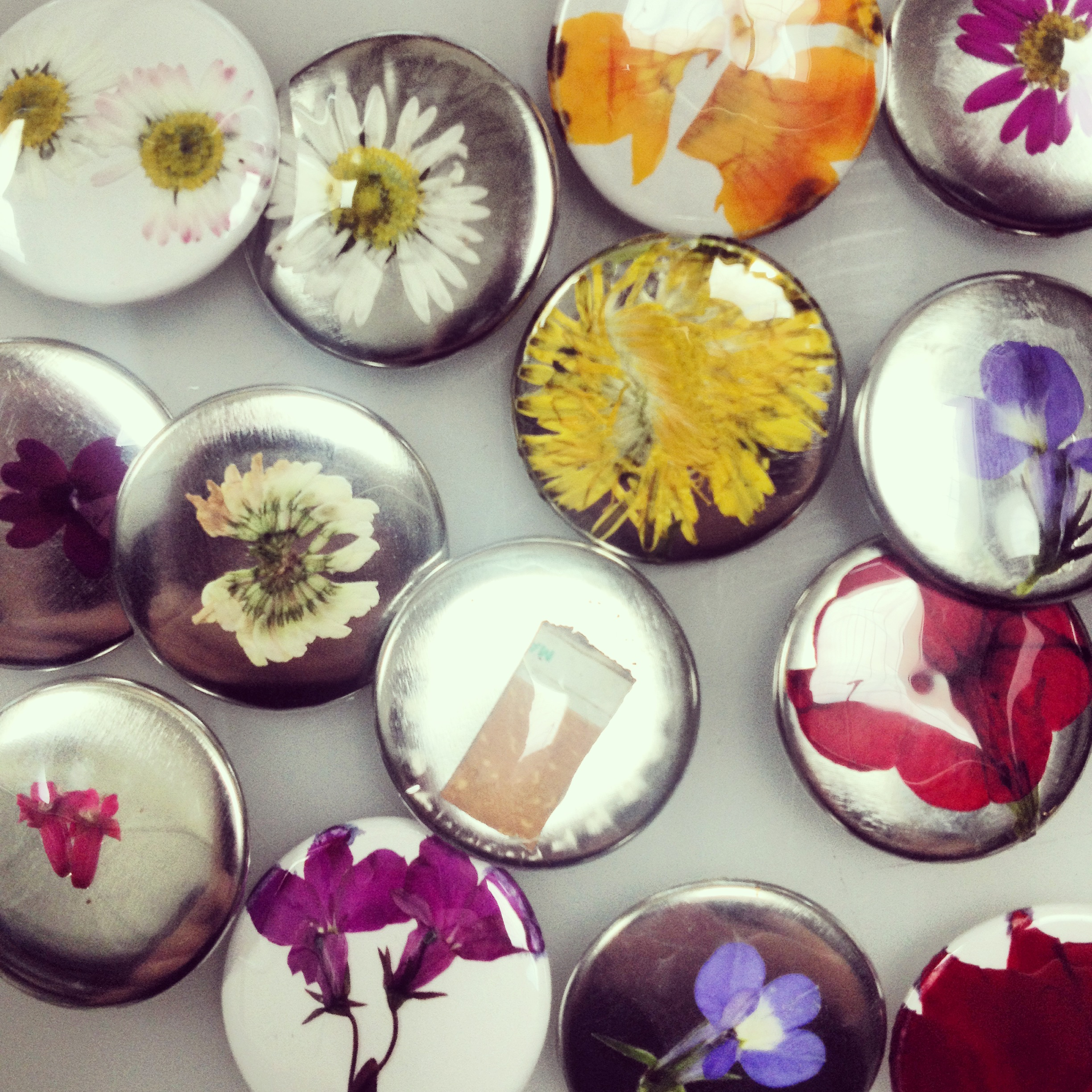 Picture of Found Flaura Buttons