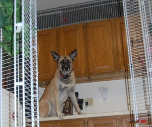 Kennel Enclosure: Wire Closet Shelving & Cable Ties in Minutes, Flexible, Movable, Removable