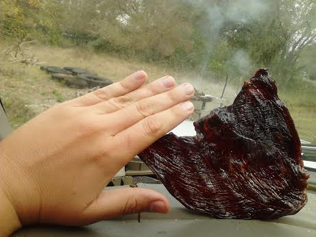 Picture of Dashboard Delight (IE; Make Beef Jerky in Your Car)