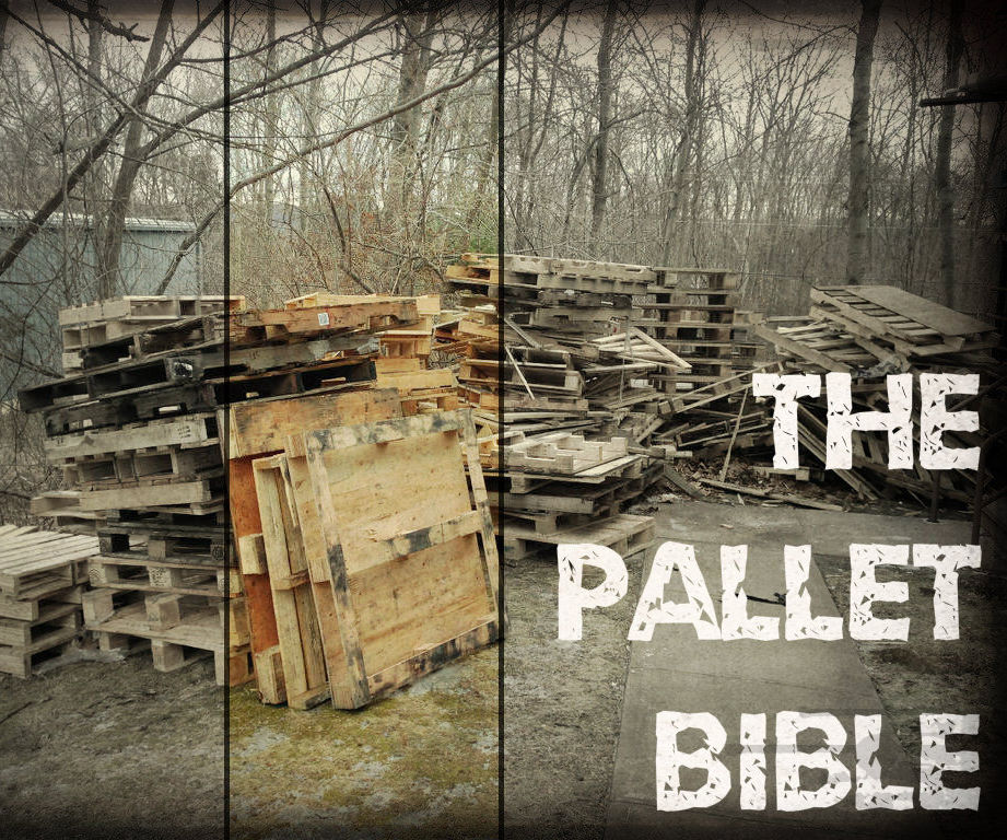 The Pallet Bible: Finding, Inspecting, and Dismantling Pallets: 4