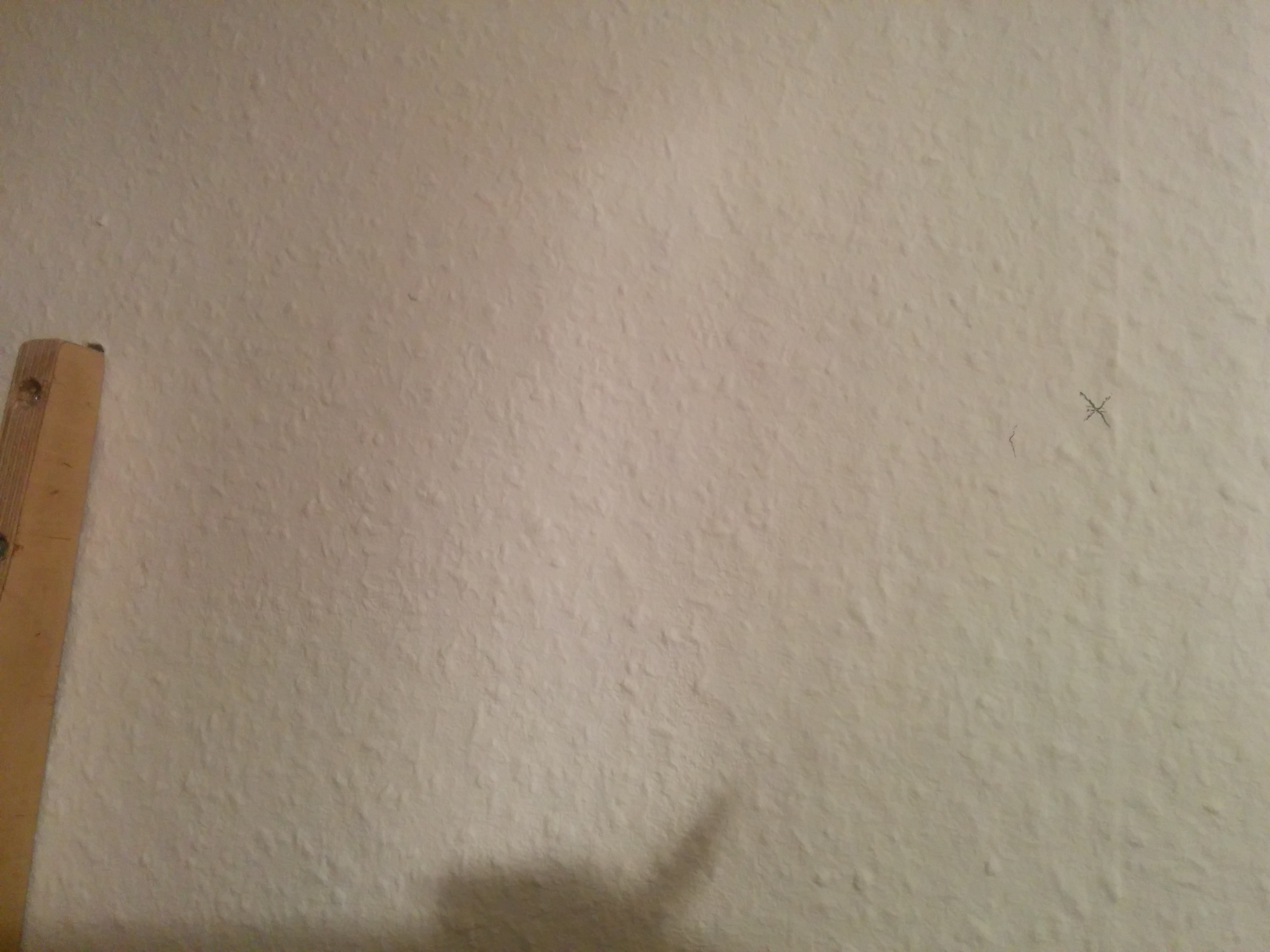 Picture of Mount to the Wall