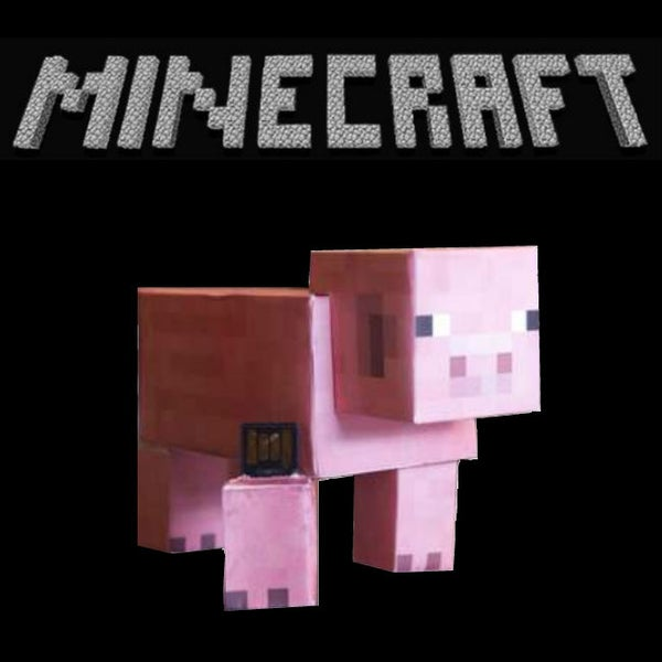 20 Minecraft Projects