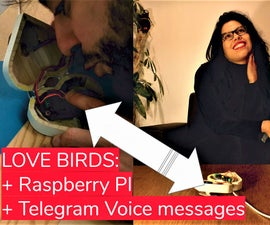 Love Birds : a Box to Send and Receive Telegram Audio Message
