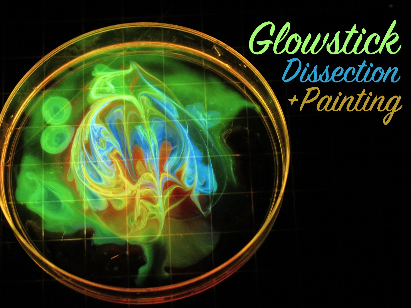 Picture of Glowstick Dissection and Painting