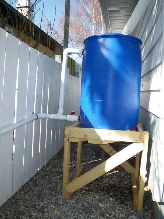 Picture of Rainwater Collection & Distribution System