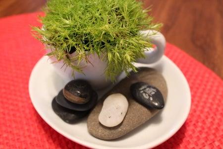 Arrange Your Garden!