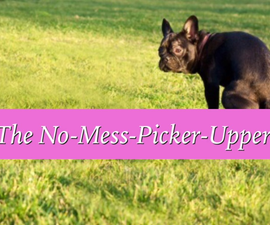 How to Build the Easy No-Mess-Picker-Upper