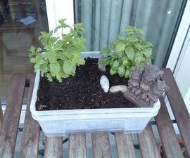 Self Watering Mini Garden