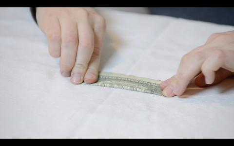 Origami Flower: How to Fold the Dollar Bills - Fold 3