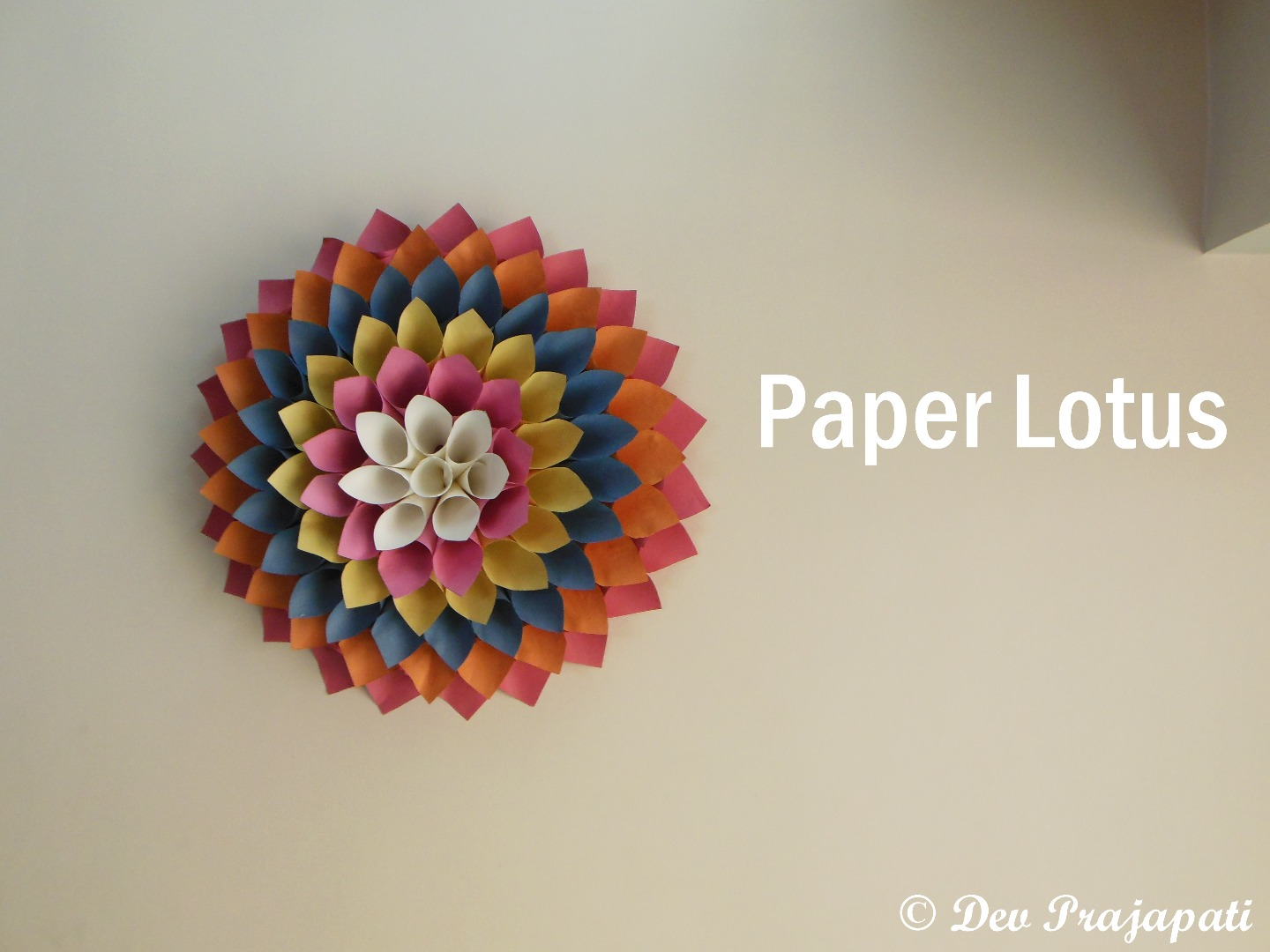 Picture of Paper Lotus