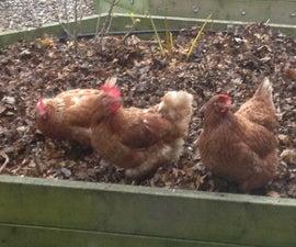 Chicken Coop Controller v4 Software Update