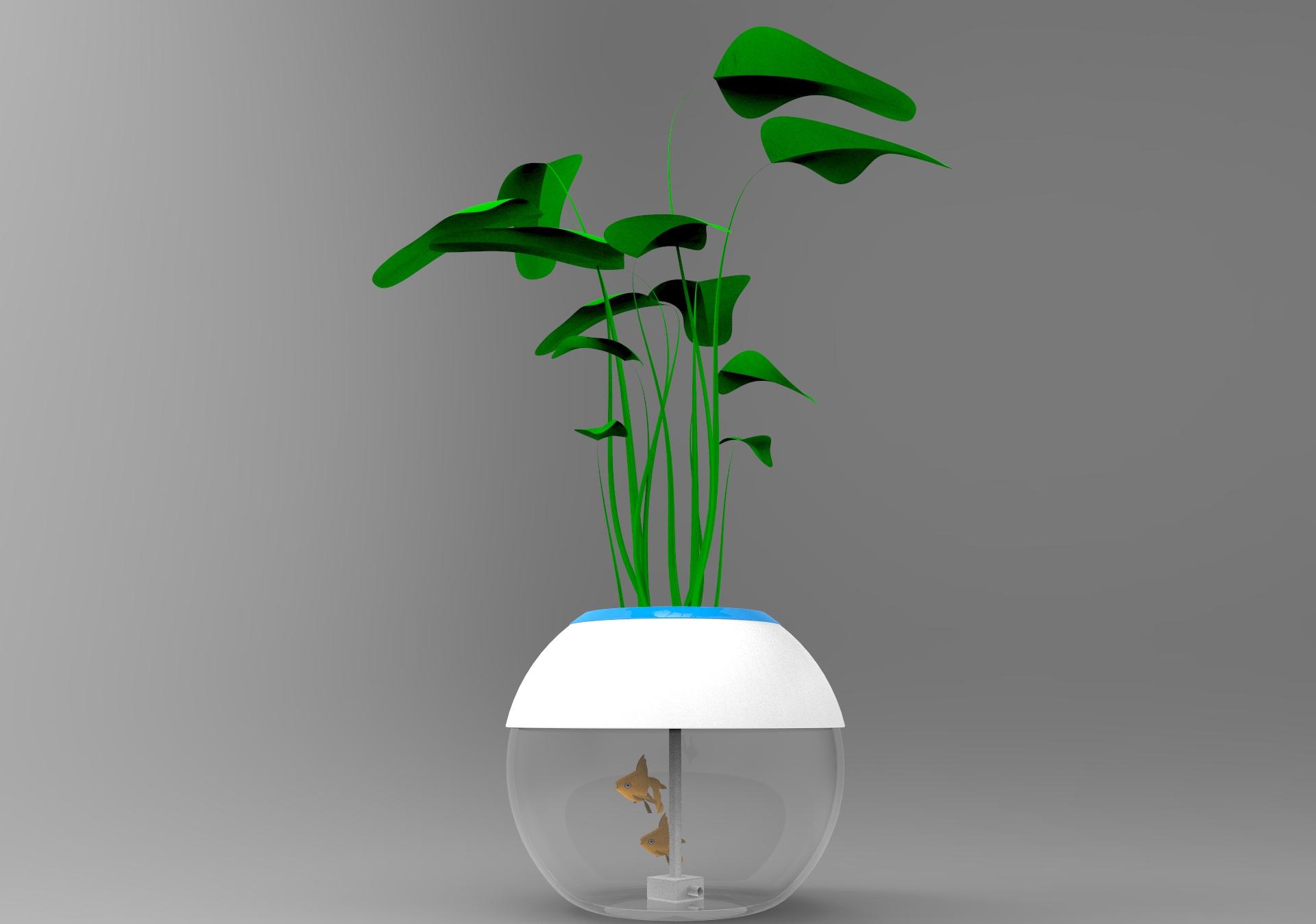 Picture of Aquaponics System