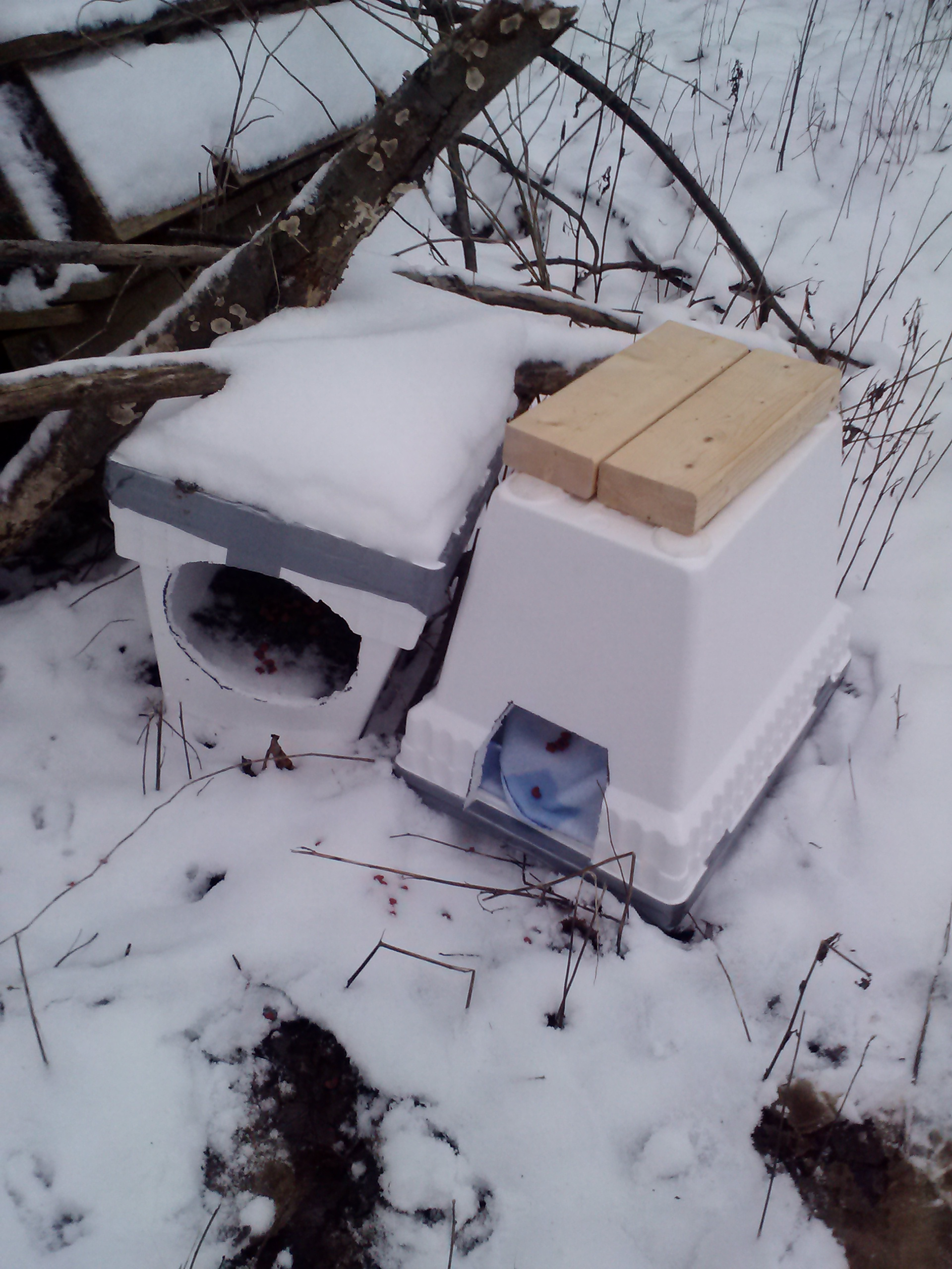 Easy Winter Cat Shelter 5 Steps With Pictures