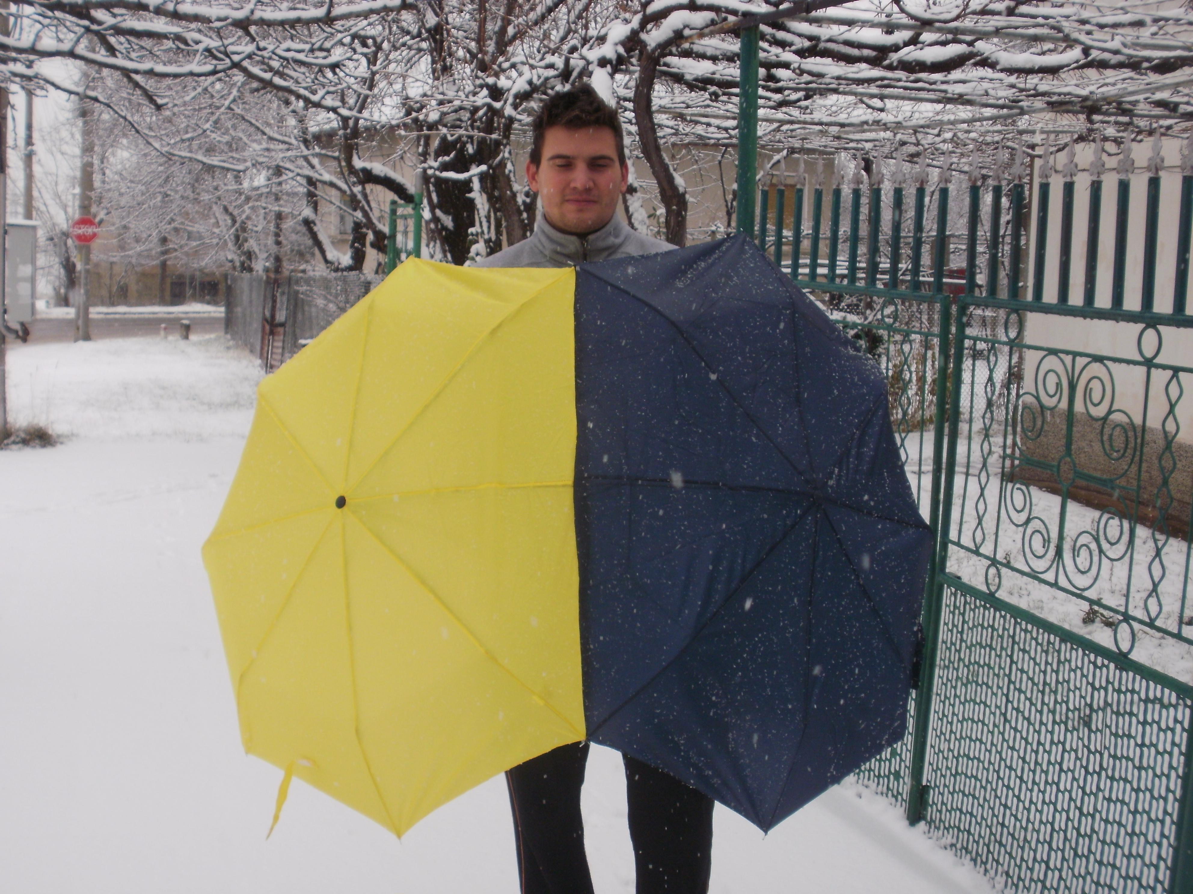 Picture of Happy Couple's Umbrella