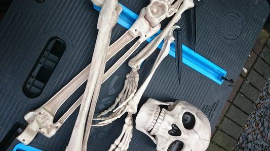 Unpack Your Skeleton