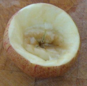 Picture of Apple Bowl #4