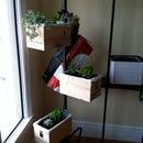Coat Rack Planter
