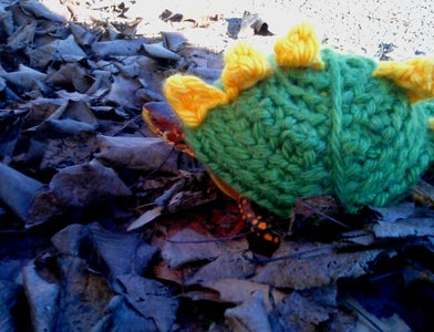 Sweater for Mr. Turtle!