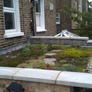 Build a Living Roof / Green Roof