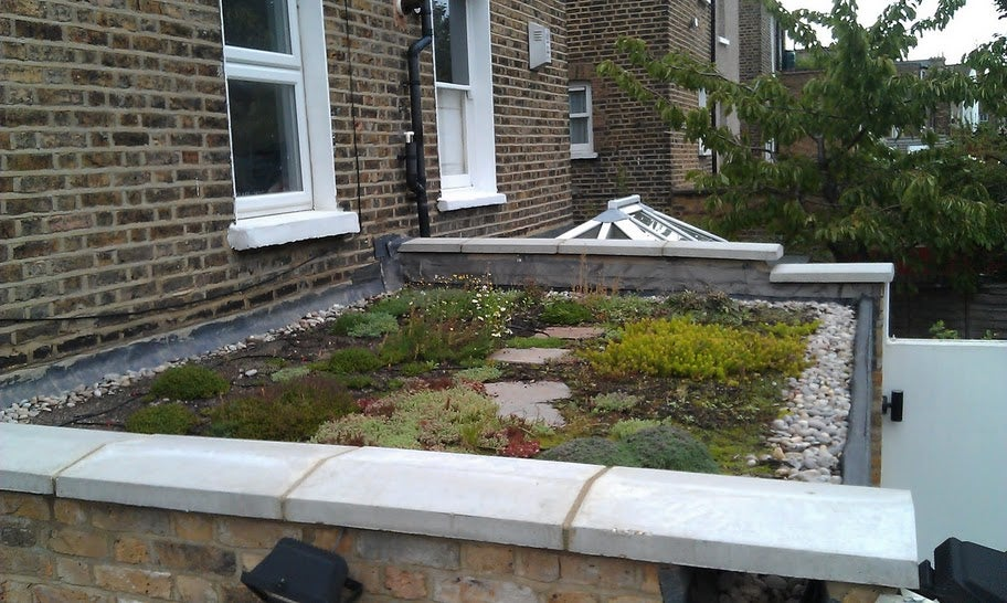 Build A Living Roof Green Roof 8 Steps With Pictures Instructables