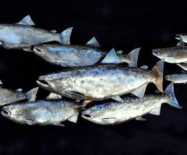 School of Fish Sculpture