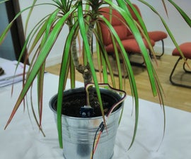 Connected plant with Sigfox, Akeru & thethings.iO
