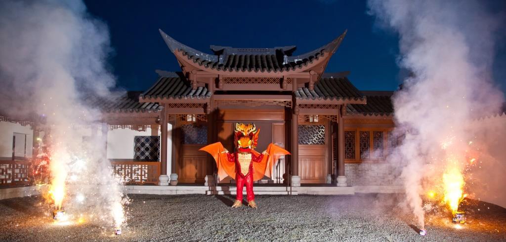 Picture of Dragon Costume