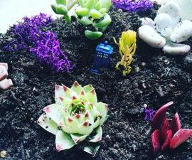 Themed Mini Garden