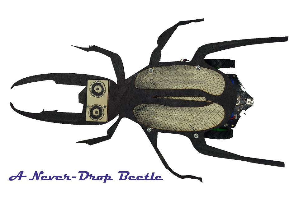 Picture of A Never Fall Beetle