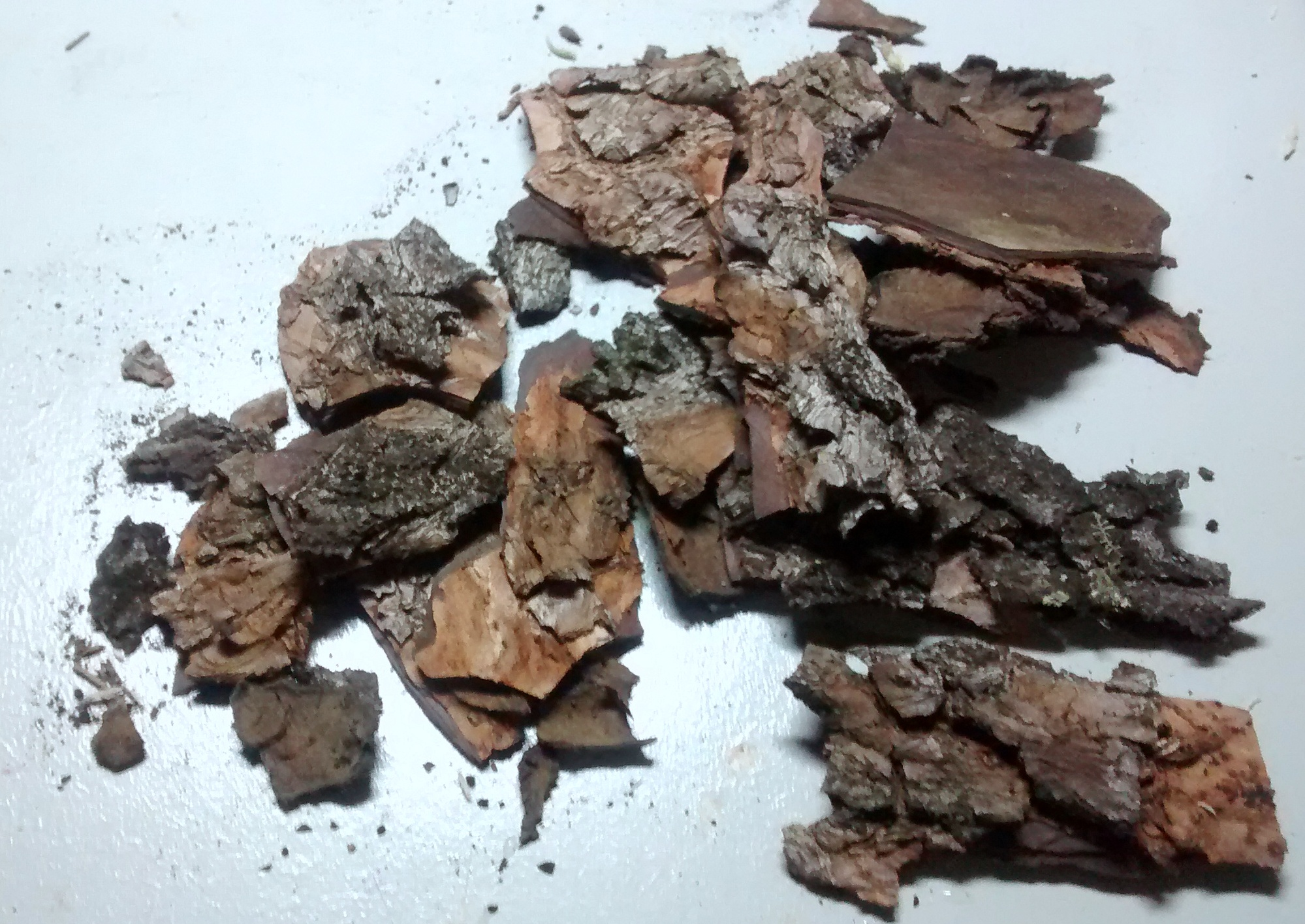 Picture of Materials That Not Plants