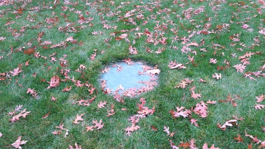 Locate Your Dumb, Plain, Eyesore of a Septic Tank Lid