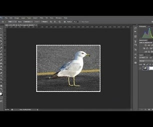 Photoshop CS6 - Create Rounded Corners in Photo