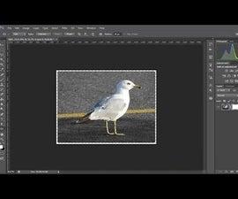 Photoshop CS6 - Create Rounded Corners in Photo