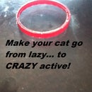 THE BEST CAT TOY EVER, AND IT'S COSTS UNDER A DOLLAR!!!!!!!!!!!!