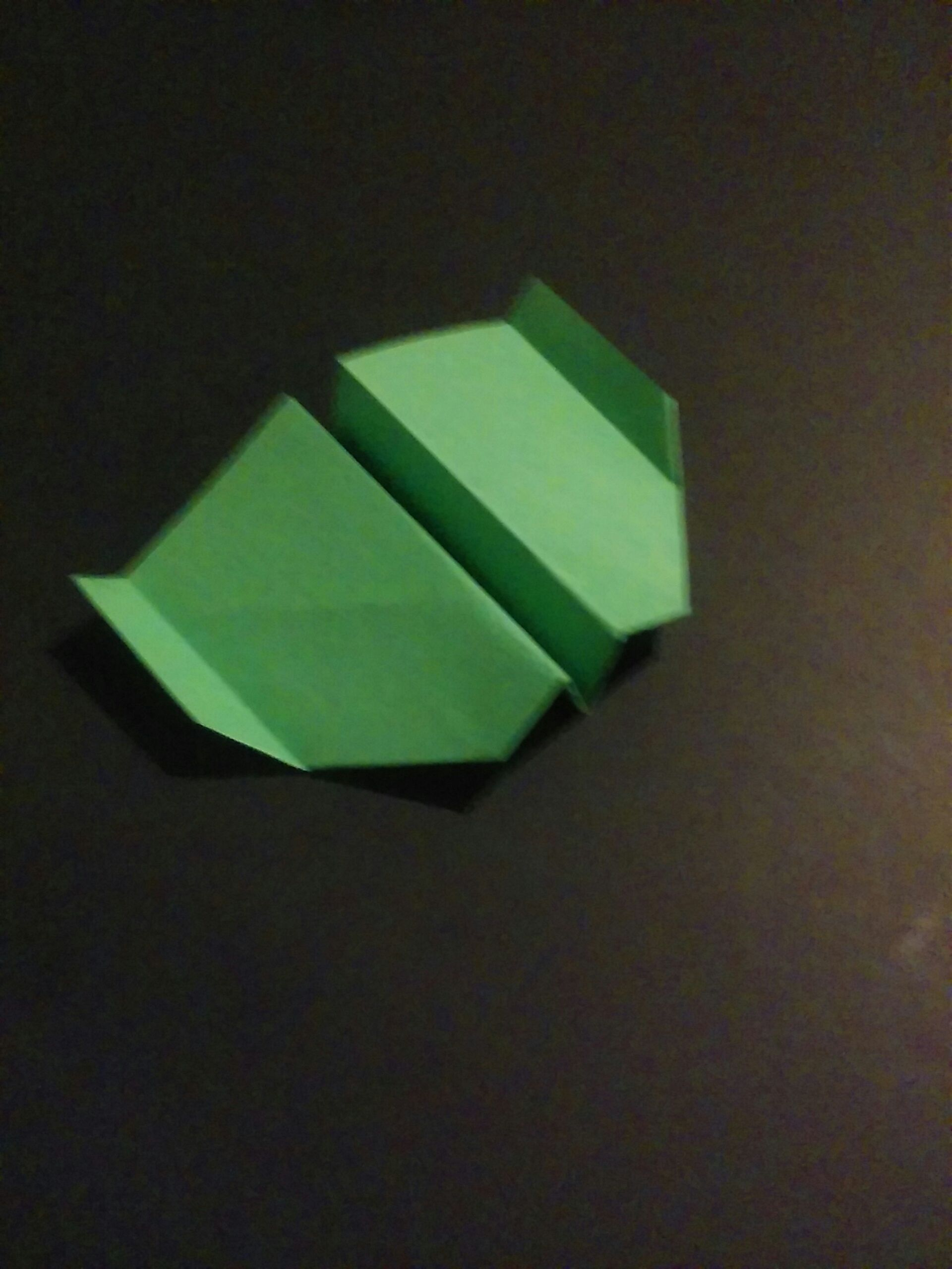 Picture of Paper Airplane: Glider