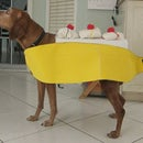 Make A Banana Split Dog Costume
