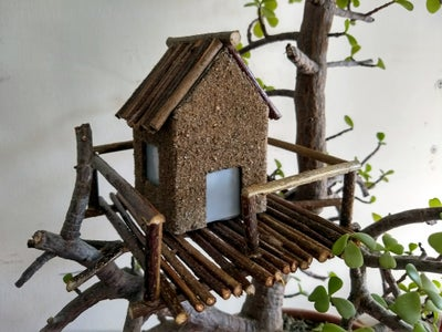 Placing the Tree House