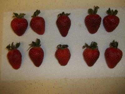 Strawberry Prep