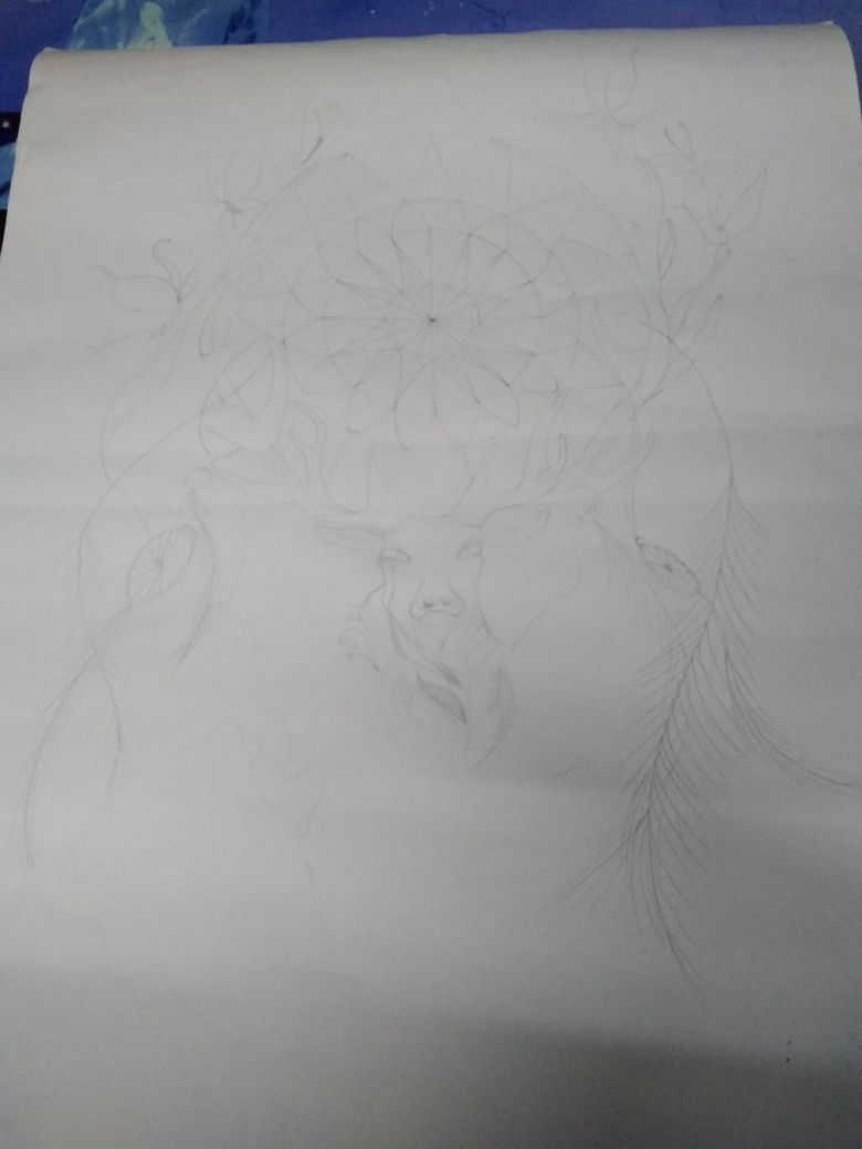 Picture of Feathers and the Final Drawing Complete