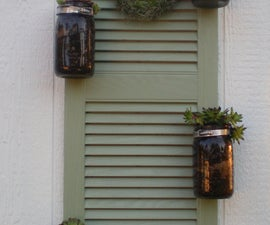 shutter planter  with succulants