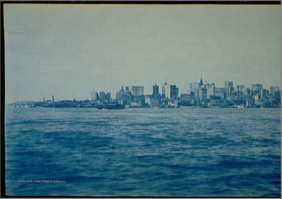 Picture of Cyanotypes - Super Easy Photo Prints at Home.