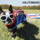 Flying in from up high, is Echo the Patriotic Skydiver!