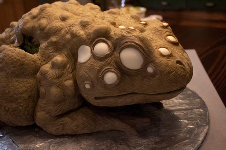 Skin Details/Painting the Toad