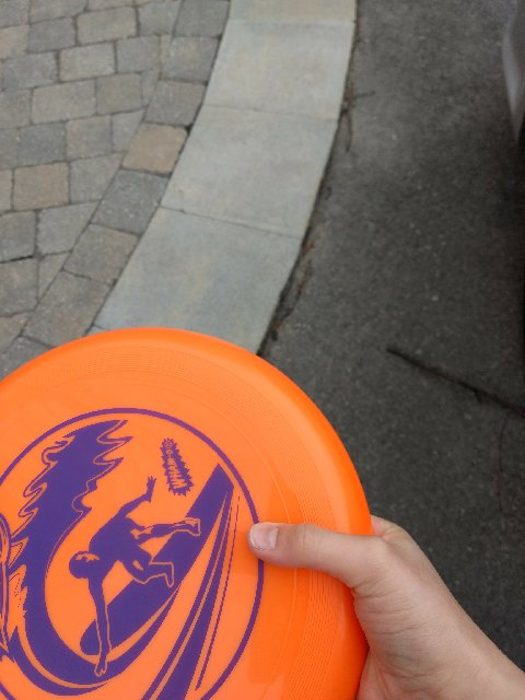 Picture of Frisbee:overhand