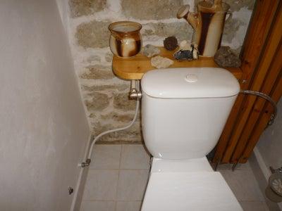 Rainwater Toilet Flush