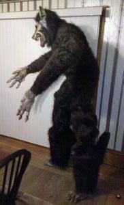 """""""Creature Reacher"""" 9 Ft Werewolf Monster Costume"""