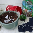 How to Compost Old Cotton T-Shirts