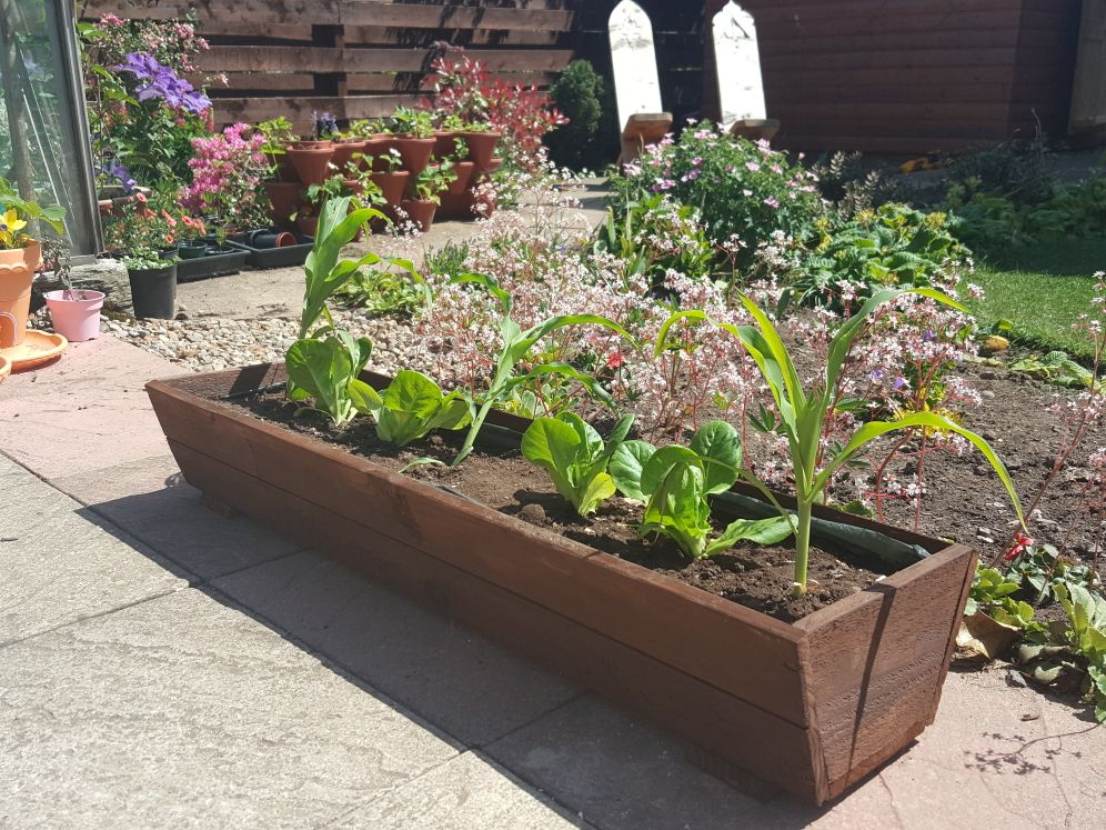 Picture of Spare Wood Planter.