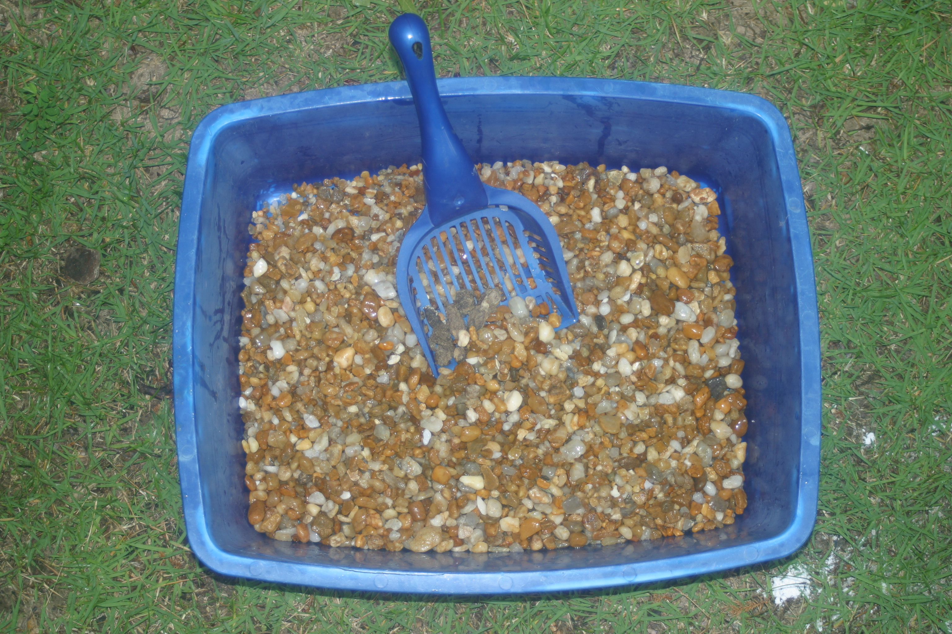 Picture of The Green Pee Cat Litter System