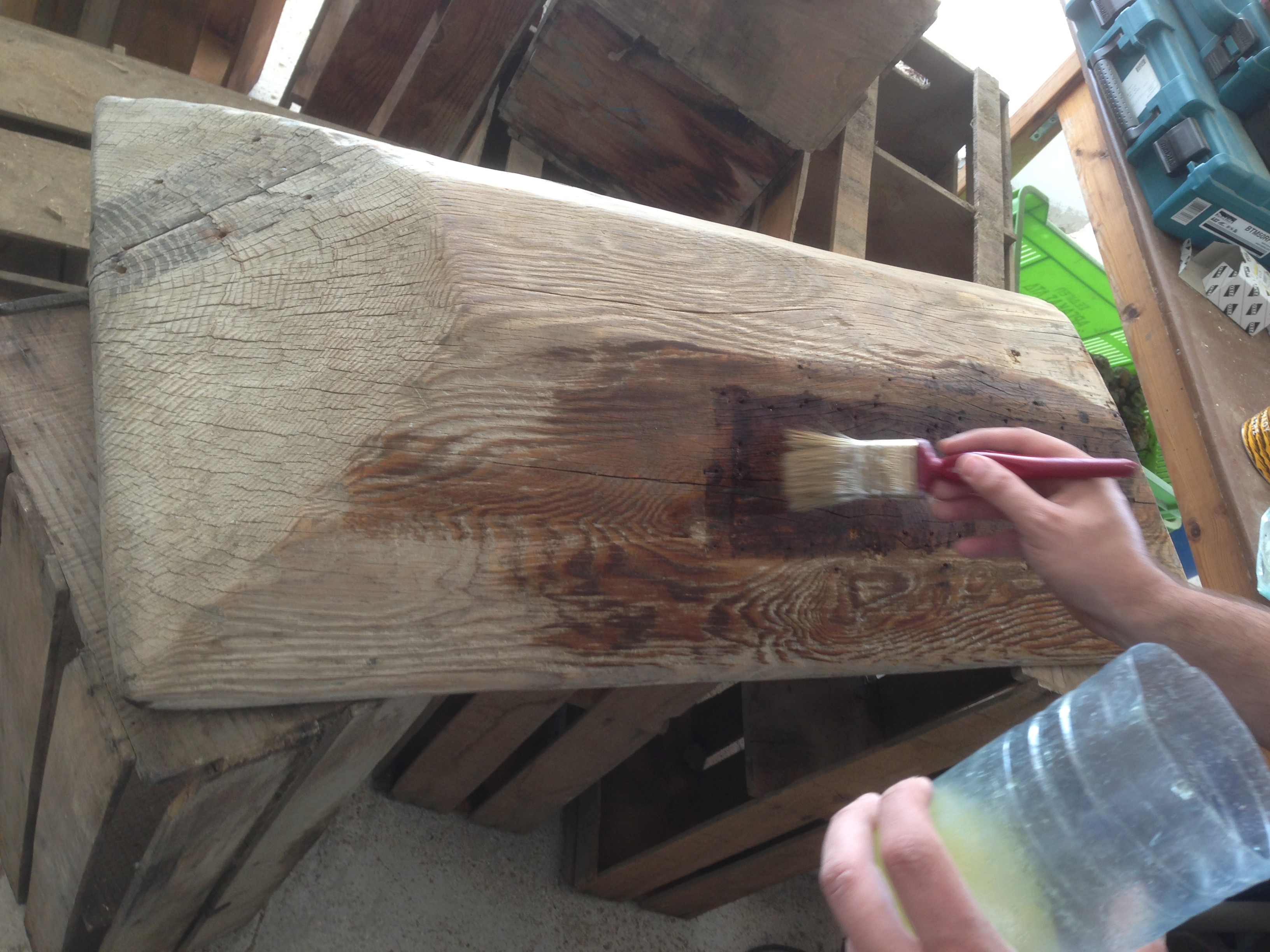Picture of Apply Woodworm